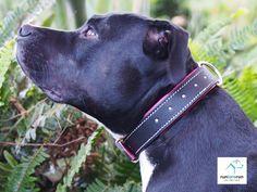 runLARArun.com Swarovski Crystal Leather Dog Collars-because your girl deserves the best.