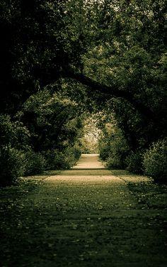 Green Road by Han S. Kim, via Flickr