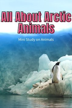 All About Arctic Animals #arcticanimals #kidsscience #homeschool #secularhomeschool #unitstudy