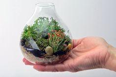 Lichen Terrarium // Forest // Teardrop Vase // Home by PinkSerissa, $35.00