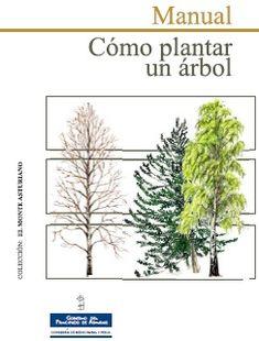 MANUAL: CÓMO PLANTAR UN ÁRBOL ecoagricultor.com