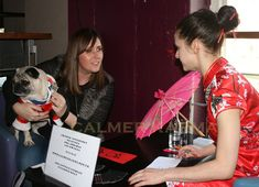 Chinese New Year Entertainment to hire. As 2018 is Year of the Dog and this is PugFest 2018 we created bespoke Chinese Astrology Readings for pugs and their owners. Available to hire across the UK including: Manchester, London, Birmingham, Wales, Brighto Chinese Fortune Teller, London Birmingham, Corporate Entertainment, Chinese Astrology, Dog Years, New Year Celebration, Chinese New Year, Corporate Events, Wales