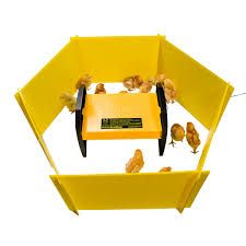 safe chicken brooder heater for chicks love the modern design
