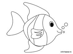 Fish Template