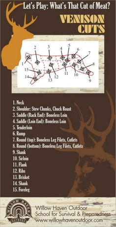 How well do you know your Venison (Deer) Meat Cuts? I like and Maybe How well do you know your Venison (Deer) Meat Cuts? I like and Maybe am I kidding, I like the whole thing! Venison Deer, Deer Meat, Deer Food, Venison Steak, Roast Brisket, Beef Tenderloin, Pork Roast, Deer Recipes, Wild Game Recipes