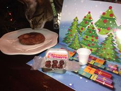 """I made """"mini donuts"""" and poured a mini cup of milk for the elves for Christmas Eve. My little guy was thrilled to see the mini version of a late night holiday treat. The big cookie (minus kitty) is for Santa."""