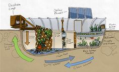Garden Pool Ecosystem by gardenpool: Wow! #Aquaponics #DIY