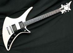 Extinct/Defunct/Rare Guitars? - SevenString.org