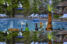 Nature Heritage Resort Bandhavgarh National Park, 3 Star Hotel in Bandhavgarh, Luxury Resort in Bandhavgarh, Book your stay at a good price. Aquarium, National Parks, Luxury, Outdoor Decor, Nature, Goldfish Bowl, Aquarius, Nature Illustration, Off Grid