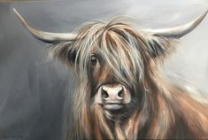 Almost washed my hair! Highland Cow Painting, Highland Cow Art, Scottish Highland Cow, Highland Cattle, Bull Painting, Painting & Drawing, Animal Paintings, Animal Drawings, Acrylic Art