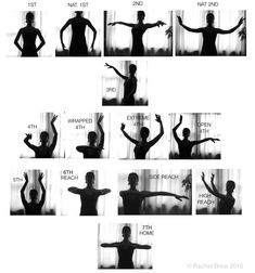 Datura Arm Positions