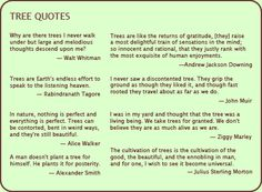 Treetime Design is your resource for efficient service. Description from quotesgram.com. I searched for this on bing.com/images
