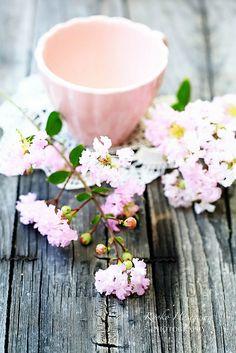pink moments~ | Flickr - Photo Sharing!