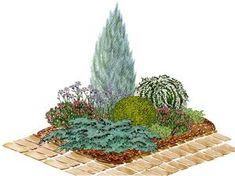 Kvetinový záhon s vysokou borievkou  - vhodný pre otvorené slnečné miesta