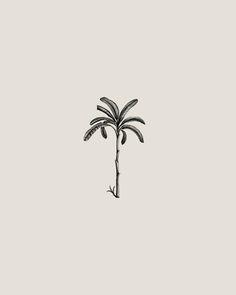 Palm Tree Sketch, Palm Tree Drawing, Tree Sketches, Delicate Tatoos, Tree Leaf Wallpaper, Small Geometric Tattoo, Palm Tattoos, Banana Palm, Plant Tattoo
