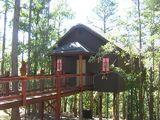 Eureka Springs Treehouses.  Sleep in the trees.