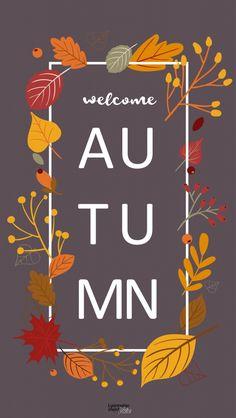 Cute Fall Wallpaper, Holiday Wallpaper, Cute Wallpapers, Wallpaper Backgrounds, Thanksgiving Wallpaper, Fall Background, Autumn Illustration, Autumn Aesthetic, Hello Autumn