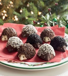 use cake balls dipped in chocolate and add hersheys kiss to end~Hedgehog goodies! Matheson Peters a twist on our chocolate mice, wouldn't you say! Hedgehog Treats, Hedgehog Cupcake, Hedgehog Cookies, Hedgehog Birthday, Happy Hedgehog, Fairy Birthday, 8th Birthday, Cute Food, Yummy Food