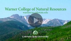 Why Warner College? Find out.   #FindYourPath