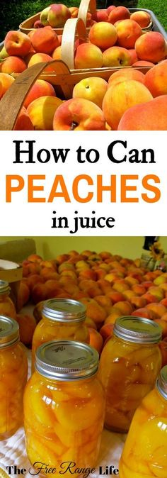 Preserve peaches at home! Learn how to can peaches in juice to preserve them all year long!