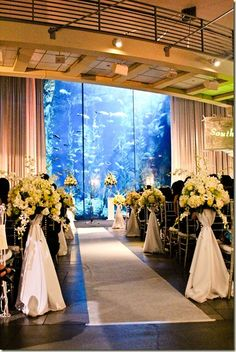 Aquarium Wedding Venue- not a huge fan of the runner and flowers but the setting is very pretty Places To Get Married, Got Married, Getting Married, Wedding Bells, Wedding Ceremony, Wedding Venues, Wedding Ideas, Wedding Themes, Perfect Wedding