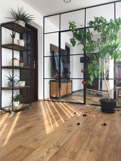 Divider, Industrial, Room, Furniture, Home Decor, Bedroom, Decoration Home, Room Decor, Industrial Music