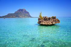 Mauritius: famosa per il suo mare e per la sua natura tropicale, l'originale meltin pot culturale e gli affascinanti contrasti di sapori, profumi e colori, rappresenta uno di quei viaggi da fare almeno una volta nella vita! Scopri 10 buoni motivi per sceglierla come meta delle tue vacanze su http://www.stilefemminile.it/mauritius-10-buoni-motivi-per-partire/