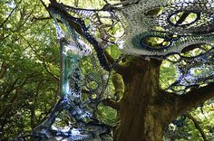 cro tree  matrix  0410