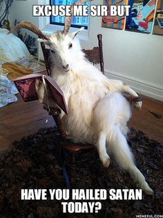 Funny memes pictures of the day. Here are the top funny pictures with captions that will definitely make you laugh. Cabras Animal, Animal Memes, Funny Animals, Cute Animals, Funny Images, Best Funny Pictures, Funny Pics, Bizarre, Cute Animal Pictures