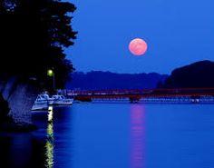 「松島」の画像検索結果