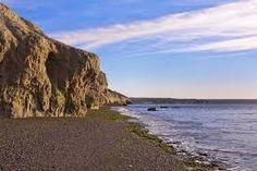 Resultado de imagen de fotos del doradillo puerto madryn