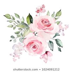 Similar Images, Stock Photos & Vectors of decorative watercolor flowers. floral illustration, Leaf and buds. Botanic composition for wedding or greeting card. branch of flowers - abstraction roses, romantic - 1024091212 Art Floral, Watercolor Flowers, Watercolor Art, Frida Art, Watercolor Paintings For Beginners, Flower Clipart, Flower Backgrounds, Floral Illustrations, Vintage Flowers