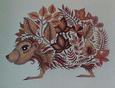 Pre-pimped hedgehog from Johanna Basford Enchanted forest