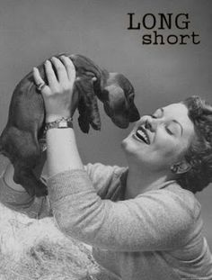 The Long and Short of it All: A Dachshund Dog News Magazine: Dachshunds in Pop Culture: Patti Page