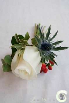 Ivory rose buttonhole with berries and eryngium thistle
