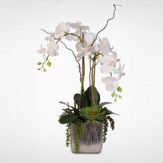 Real Touch White Silk Orchids and Succulents Arrangement in Silver Ceramic Pot Ikebana Arrangements, Orchid Flower Arrangements, Orchid Centerpieces, Ikebana Flower Arrangement, Tropical Centerpieces, Silk Orchids, White Orchids, Silk Flowers, Orchid Drawing