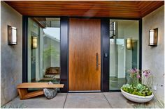 Vision house entrance - door and planter