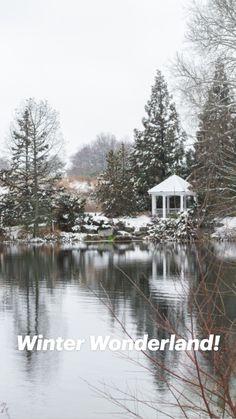 Inspiration Wall, Writing Inspiration, Winter Photography, Nature Photography, Beautiful Landscapes, Beautiful Gardens, Doraemon Wallpapers, Winter Snow, Amazing Nature