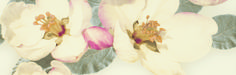 Paradyz Chiara Garden, Painting, Design, Art, Art Background, Garten, Lawn And Garden, Painting Art, Kunst