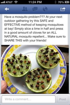 Mosquito repellant- I hope this is true! Alaskan Mosquitos are the size of rats out here! Ha