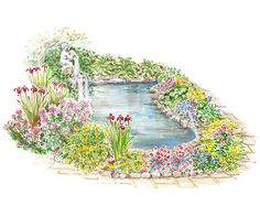 Create a carpet of color around your pond or stream.