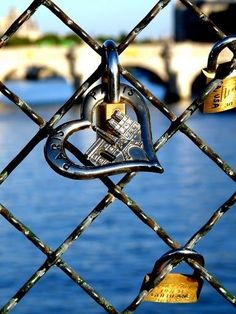 Paris love locks ~ Colette Le Mason @}-,-;---