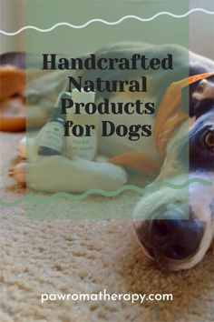 Our PawromaTherapy natural pet products are all handcrafted in our office in Florida by holistic veterinarian, Dr. Deneen Fasano. Made with natural, organic herbs and essential oils. Puppy Care, Dog Care, Lovers Gift, Dog Lovers, Flea Powder For Dogs, Dog Skin Allergies, Dog Separation Anxiety, Dog Nutrition, Pet Shampoo