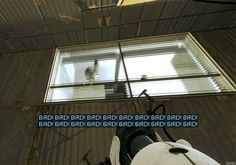 Portal 2 XD The bird chasing Wheatley! Portal Memes, Portal 2 Funny, Portal 2 Wheatley, Valve Games, Aperture Science, Gamer Humor, Funny Games, Combustible Lemons, Video Games
