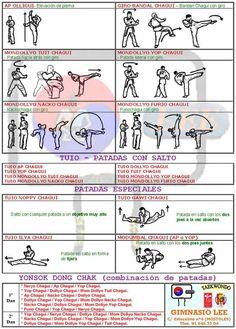 tecnicas de pierna, chagui