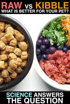 Check out what this Finnish Pet Food study found about the debate of RAW FOOD vs KIBBLE! Tag someone who NEEDS to see this.