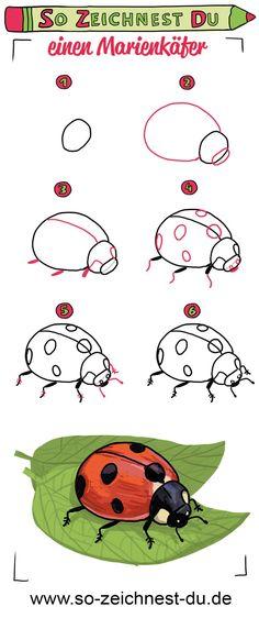 Die 46 besten Bilder von zeichnen lernen für Kinder in ...