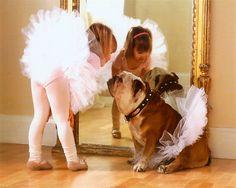 ♥ Baggy Bulldogs Bullerina's ♥