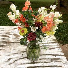 Cerinthe (Honeywort), Sunnis, Snapdragons, Ammi Bouquets, Glass Vase, Spring, Home Decor, Decoration Home, Bouquet, Room Decor, Bouquet Of Flowers, Home Interior Design