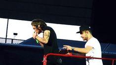Harry, Harry, Harry